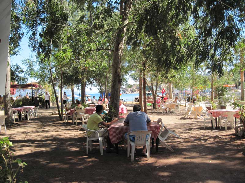 Turunç Tea Garden - relax under the shady trees and enjoy the sea view